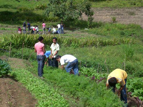 Medios de financiación en contextos de desarrollo. El papel de las comunidades en los proyectos.
