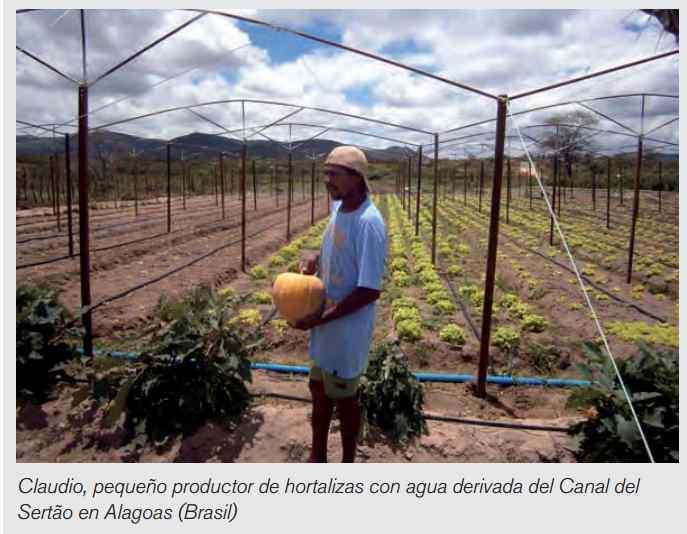 Agricultor en el Estado de Alagoas