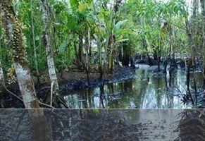 Transnacionales, derechos humanos y responsabilidad ambiental: El caso Chevron – Texaco