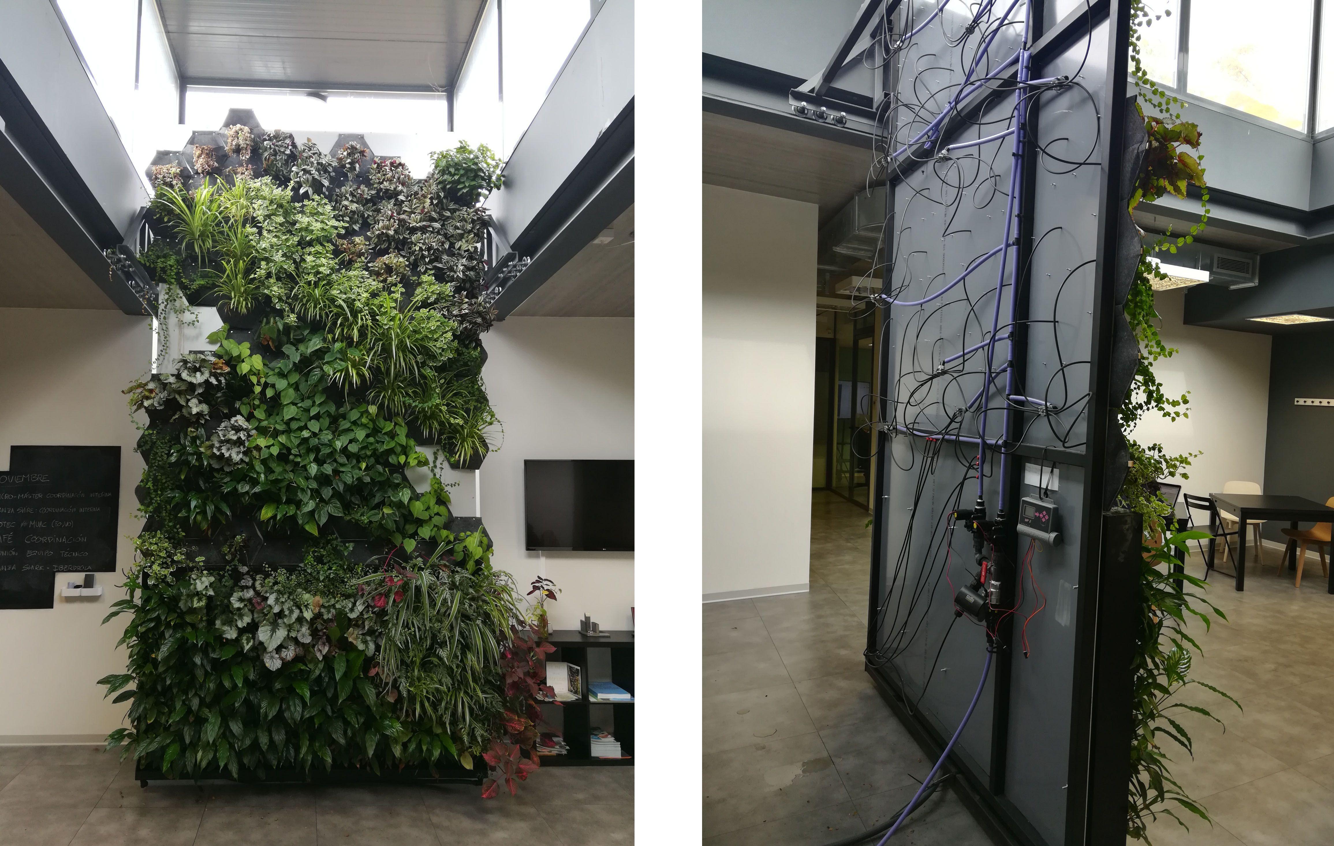 Jardines verticales en interior cu nto nos ayudan a - Jardin vertical interior ...